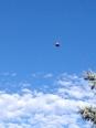 my favorite hot air balloon